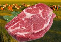 批发生鲜牛肉(冷冻)