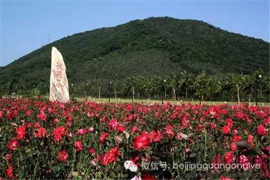 解放后的北京地图就有玫瑰谷风景区的标识,影响广泛.